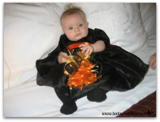 Baby Princess P in her black dress - 42 Things in Your Craft and Hobby Room