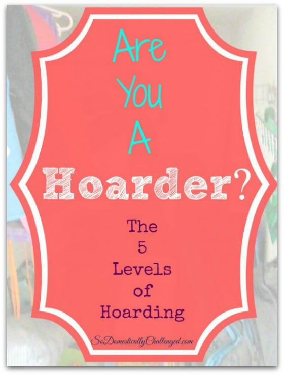 So Domestically Challenged - Are You a Hoarder - 14 Awesome Things