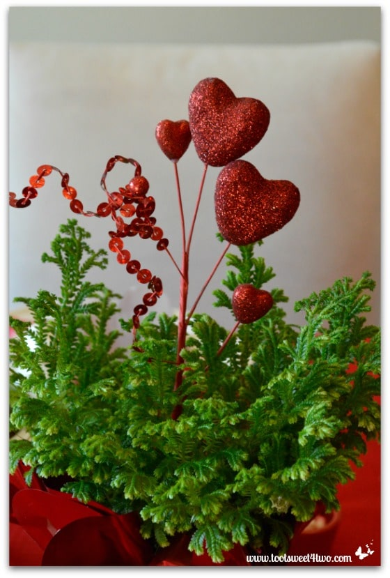 Valentine's Day heart-shaped pick and fern