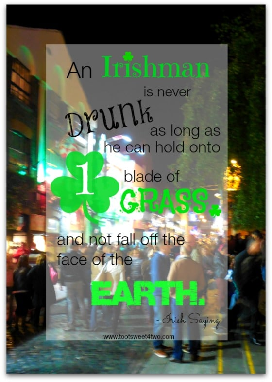 Drunk Irishman - 17 Irish Blessings, Proverbs and Toasts