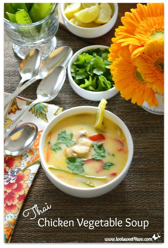 Thai Chicken Vegetable Soup - Pot O'Gold
