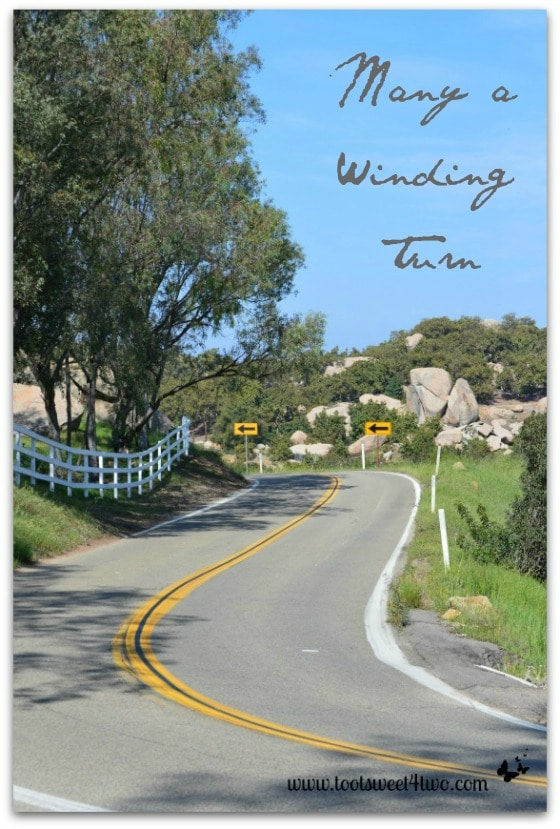 Many a Winding Turn - country road