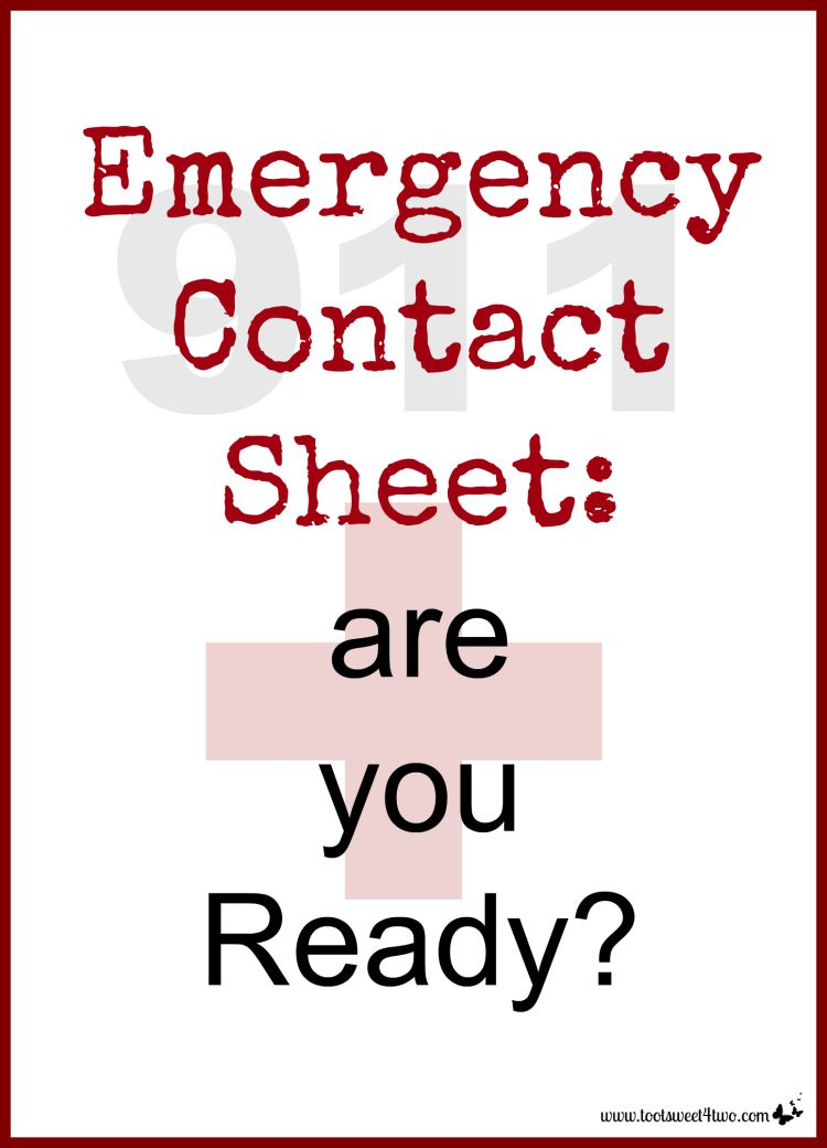 Do you have an Emergency Contact Sheet completed for your family? Is it posted on your refrigerator or in a family household binder? Now's your chance to be pro-active and complete one! Get this FREE printable Emergency Contact form at www.tootsweet4two.com.