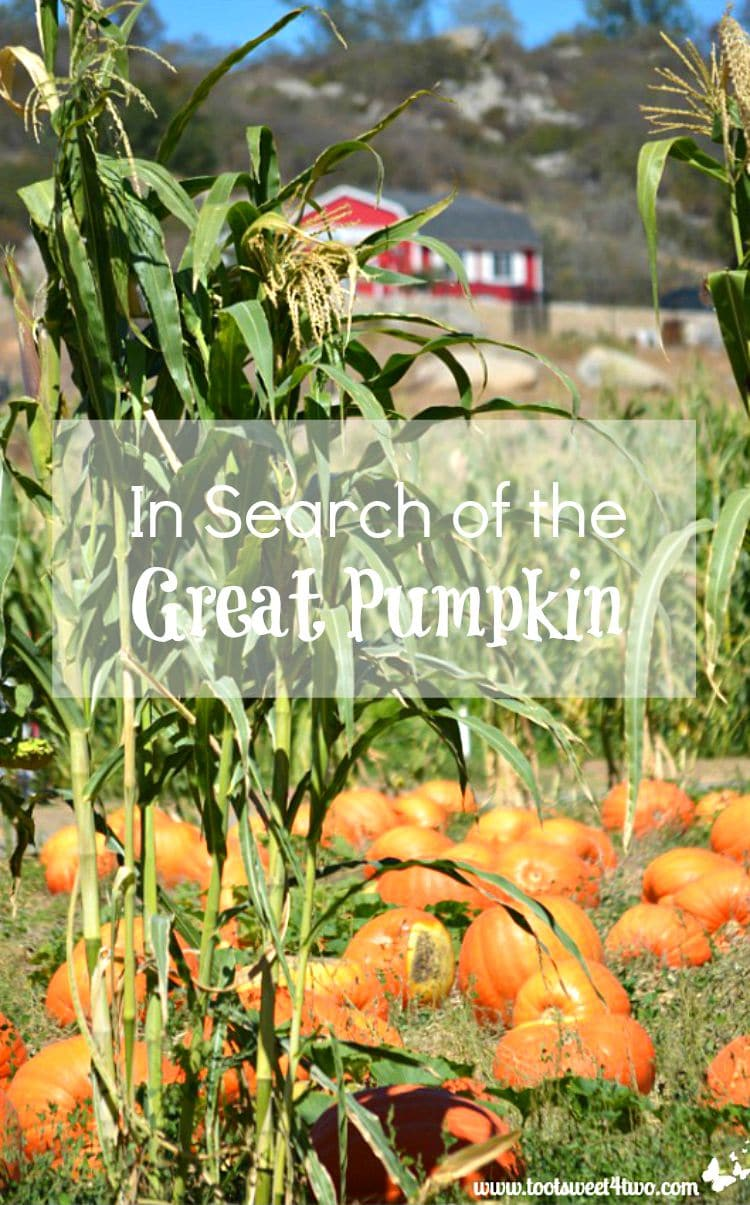 In Search of the Great Pumpkin cover for decorating hack