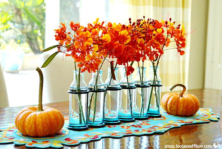 Mini pumpkins and Red Mexican Bird of Paradise flowers in turquoise vases