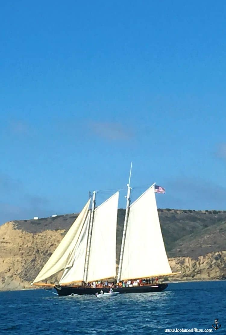 The America sailing past Pt. Loma, San Diego