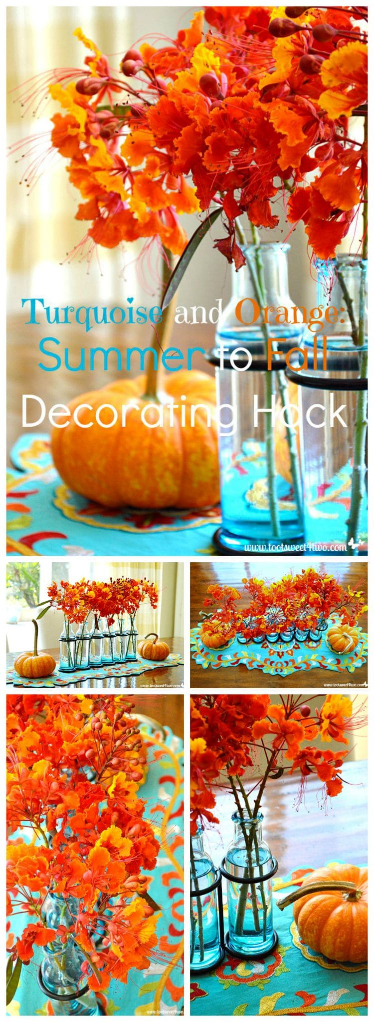 Turquoise and Orange Summer to Fall Decorating Hack Pinterest