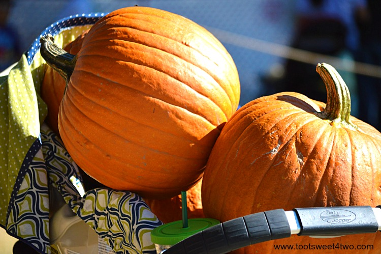 Close-up of pumpkins in a baby stroller