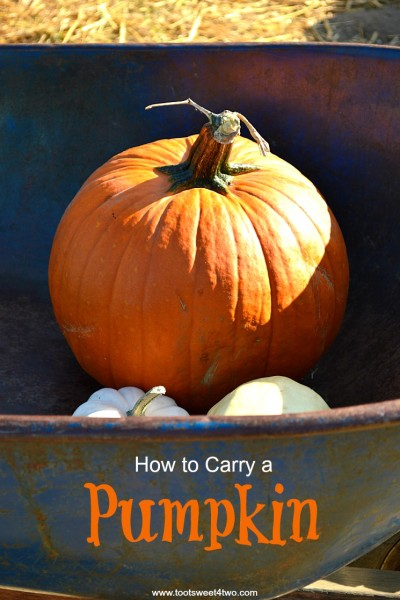 How to Carry a Pumpkin