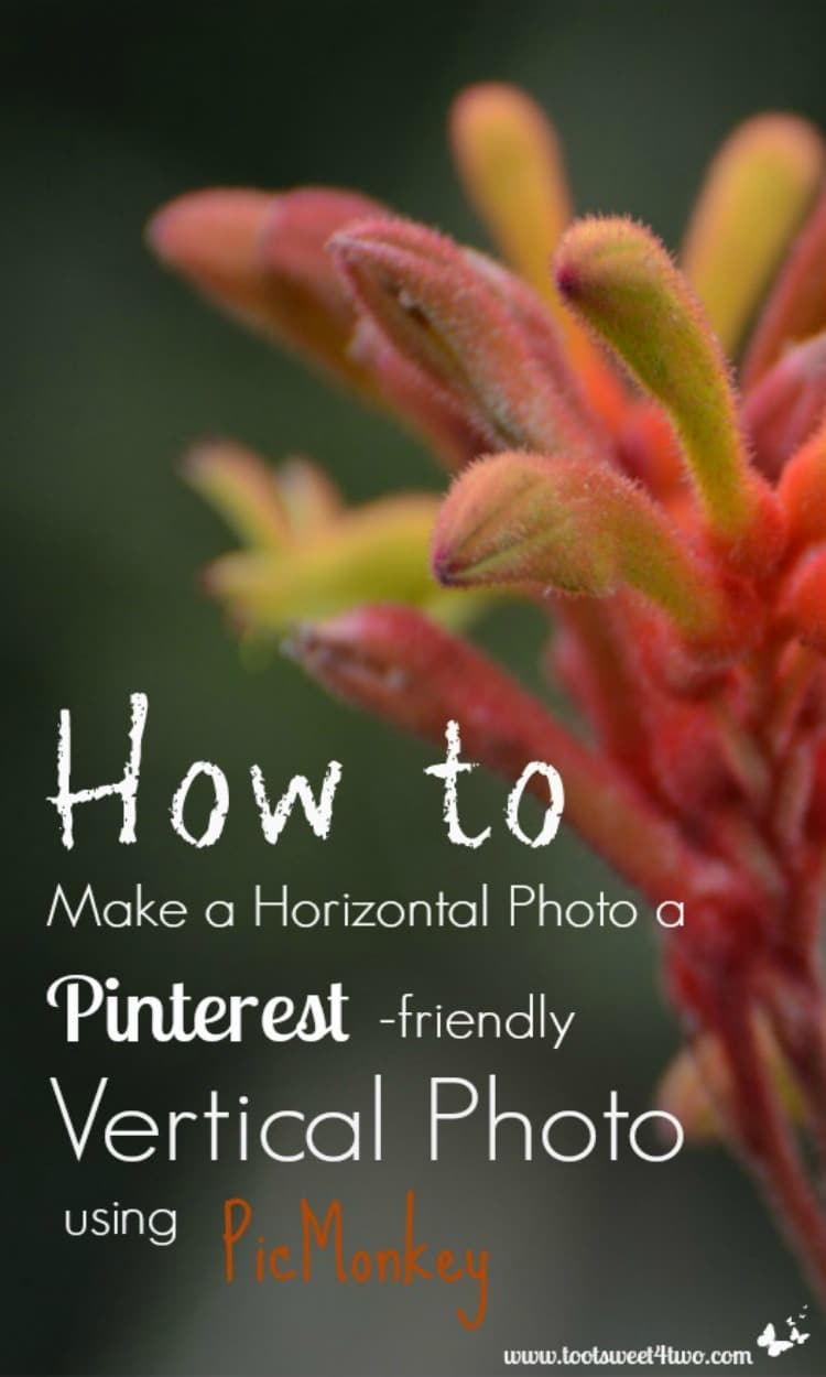 How to Make a Horizontal Photo a Pinterest-friendly Vertical Photo using PicMonkey 750x1250