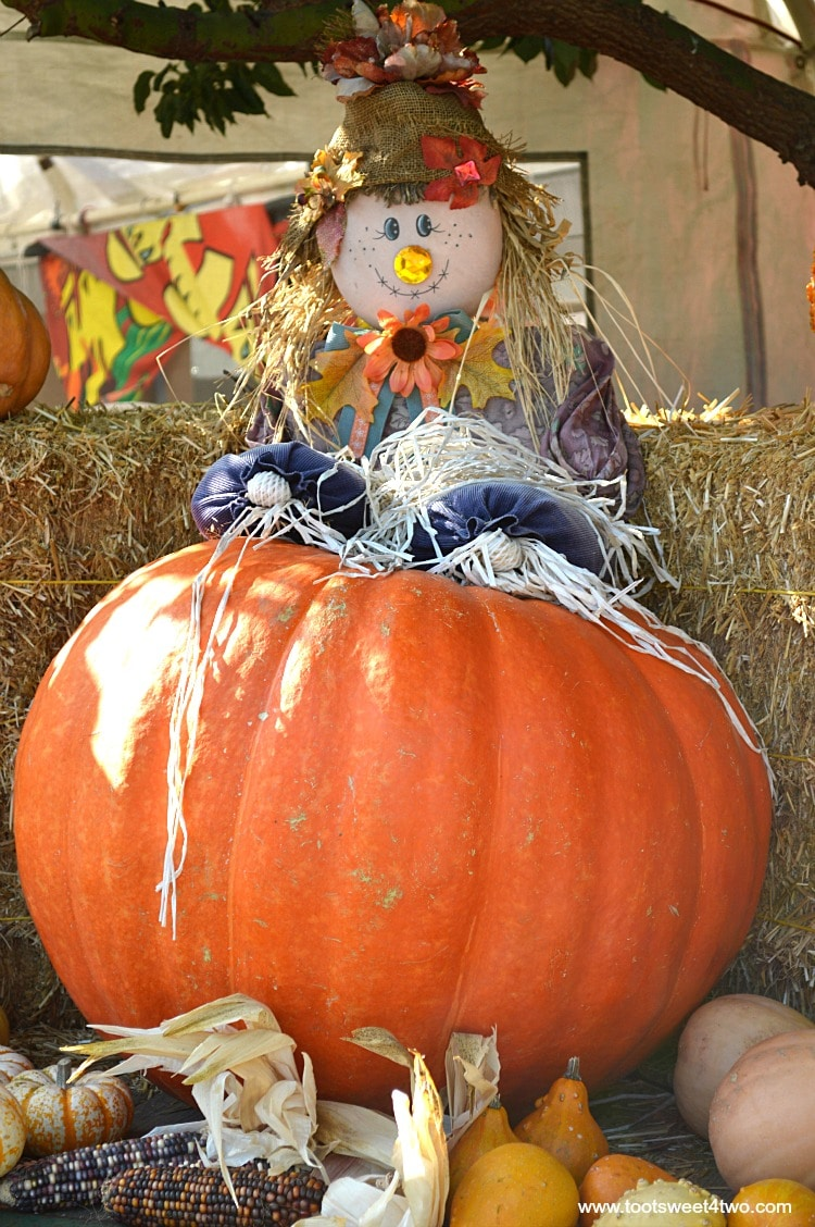Scarecrow stacked on a Big Mac pumpkin