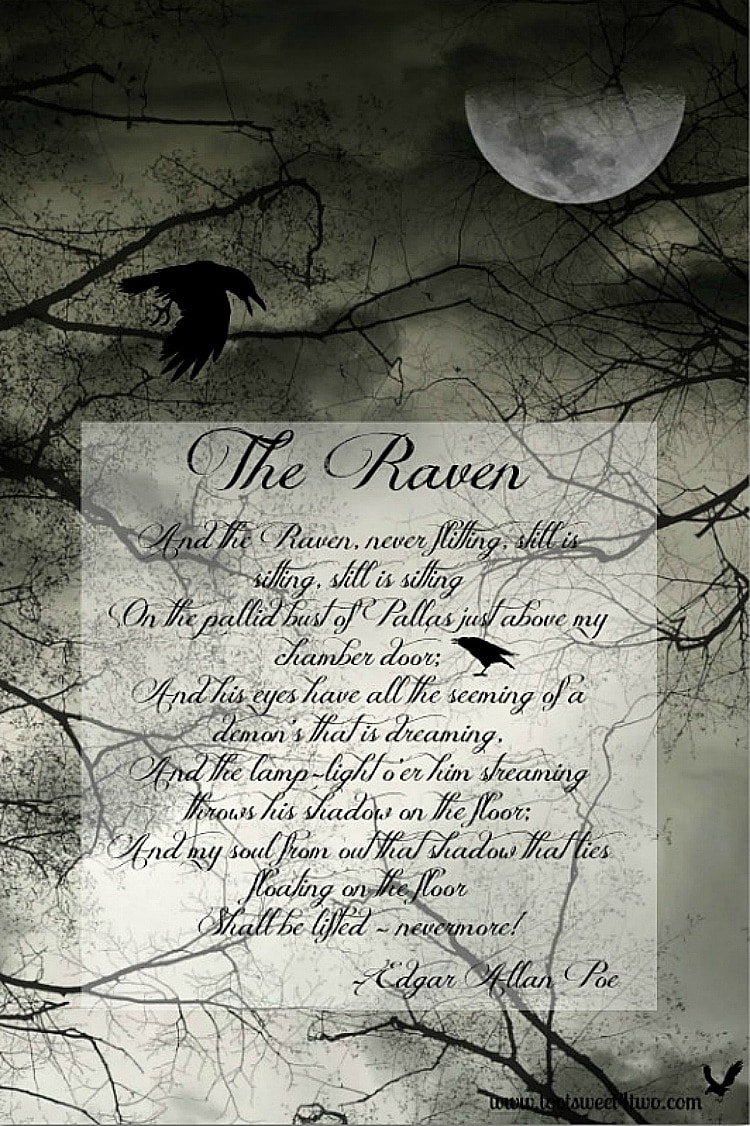 The Raven 750x1126