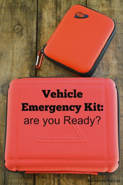 Vehicle Emergency Kit:  are you Ready?