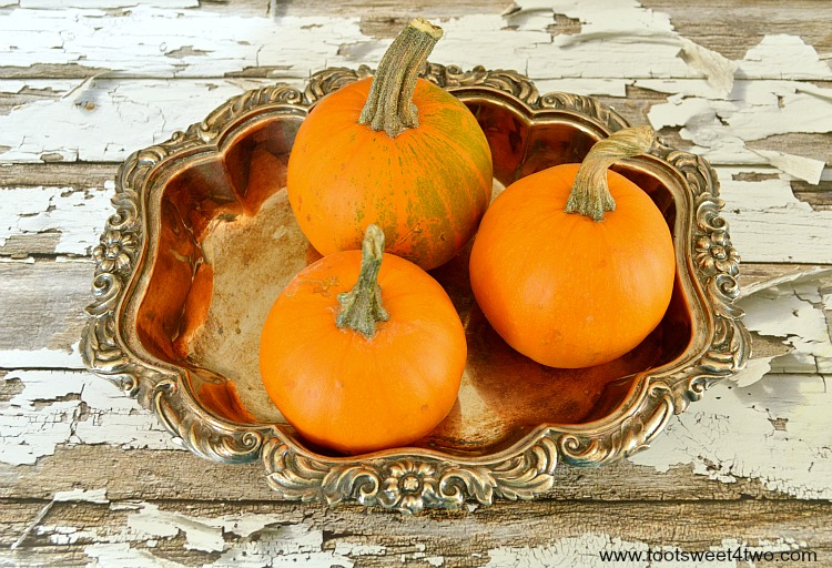 Wee-Be-Little pumpkins in a silver tray