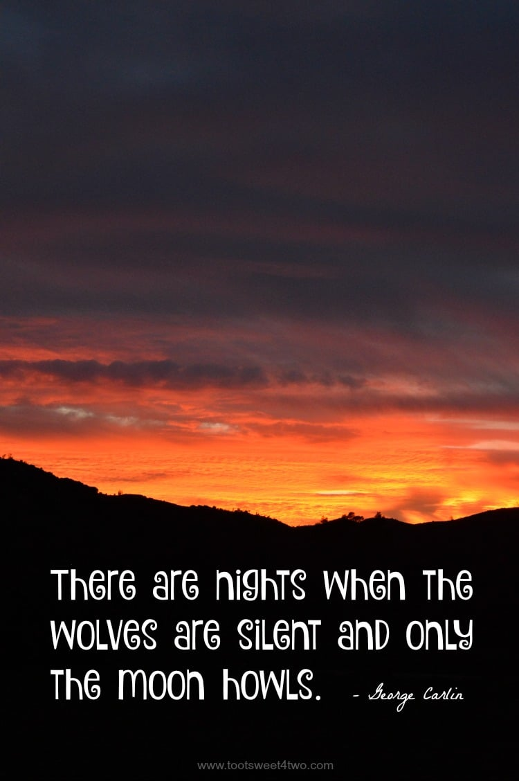 Wolves are Silent cover