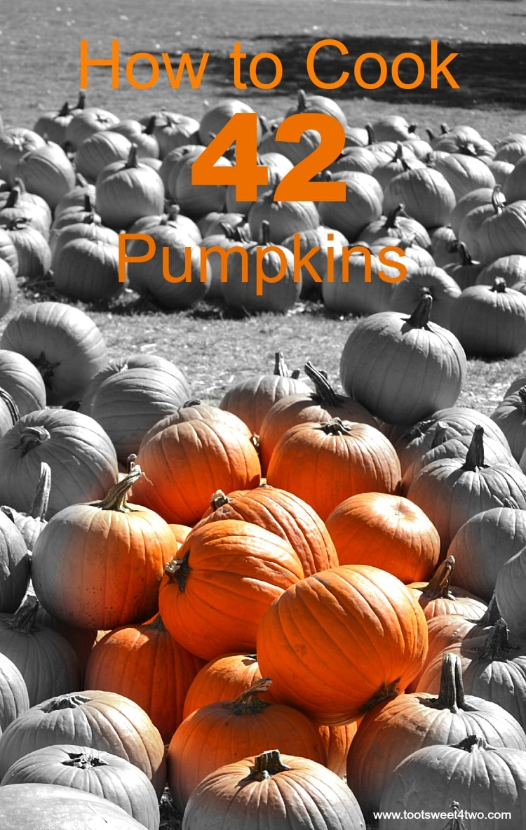 How to Cook 42 Pumpkins cover - Pic 1