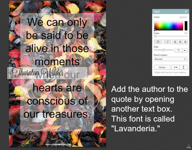 How to add text to photos in PicMonkey instructions - 9