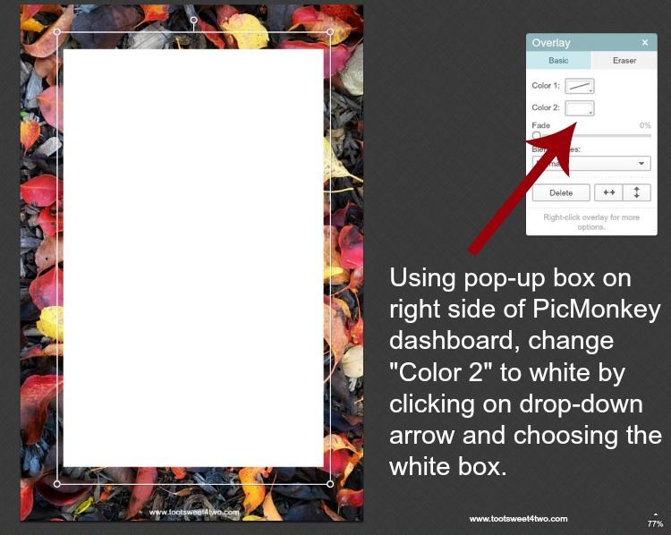 How to change color of rectangle box in PicMonkey instructions - 3