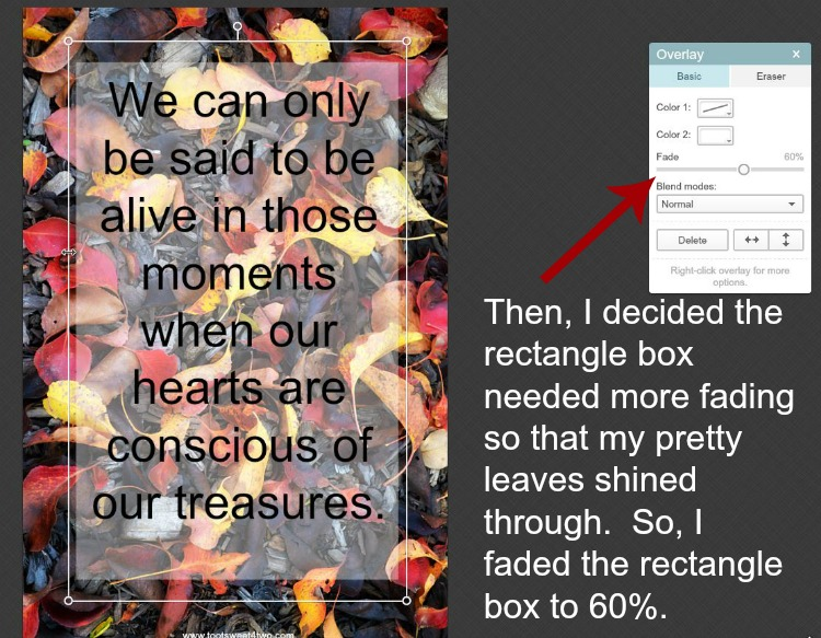How to fade a geometric overlay in PicMonkey instructions - 8