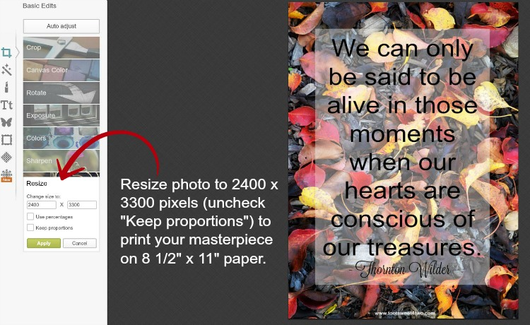 How to resize photos in PicMonkey instructions - 13