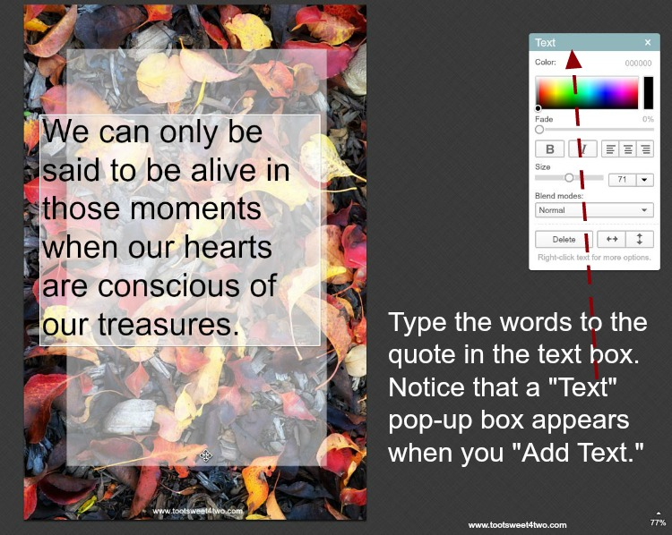 How to type text on photos in PicMonkey instructions - 6