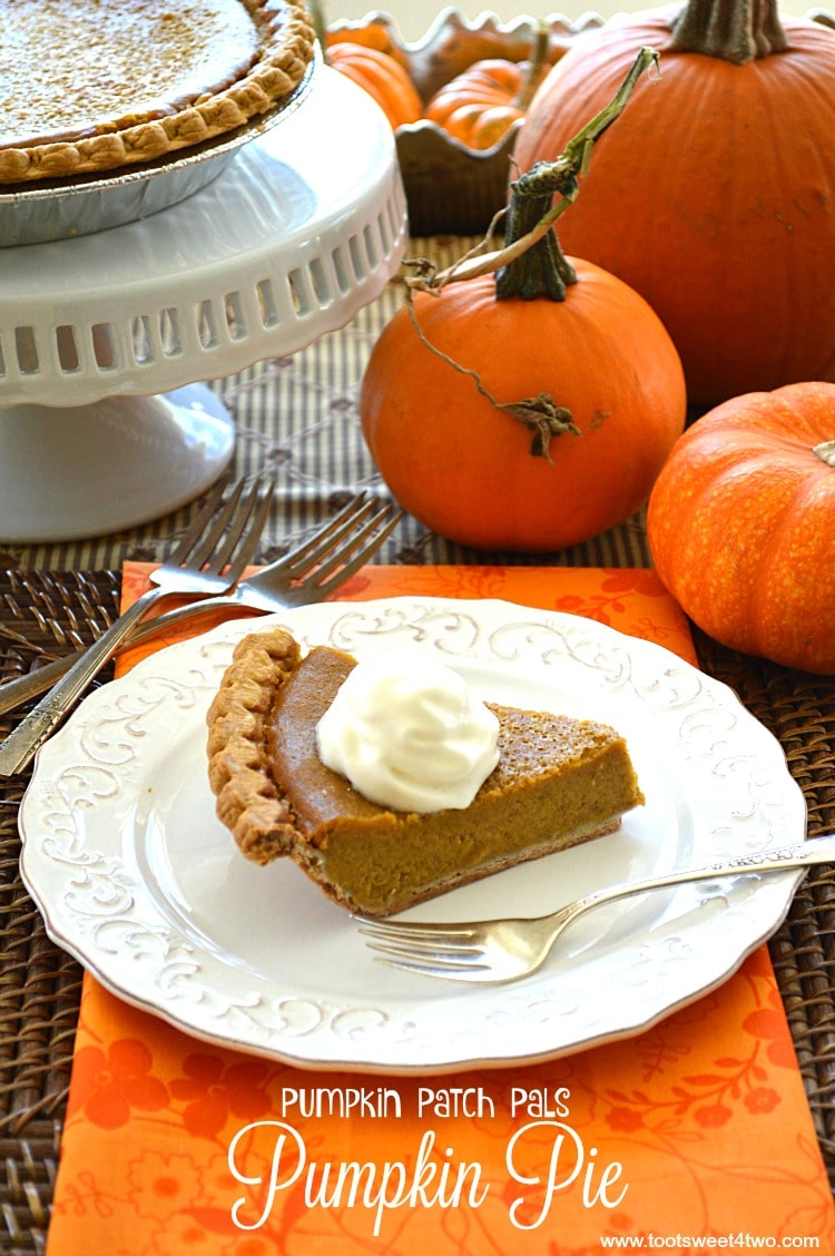 Thanksgiving Dessert - Pumpkin Patch Pals Pumpkin Pie