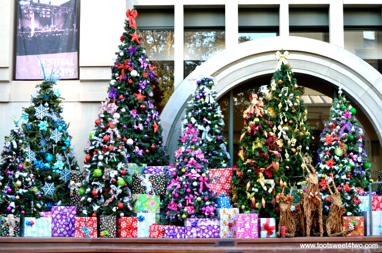 Christmas Trees at Center for the Arts, Escondido, CA