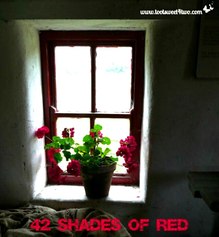 42 Shades of Red - red window frame in Irish cottage