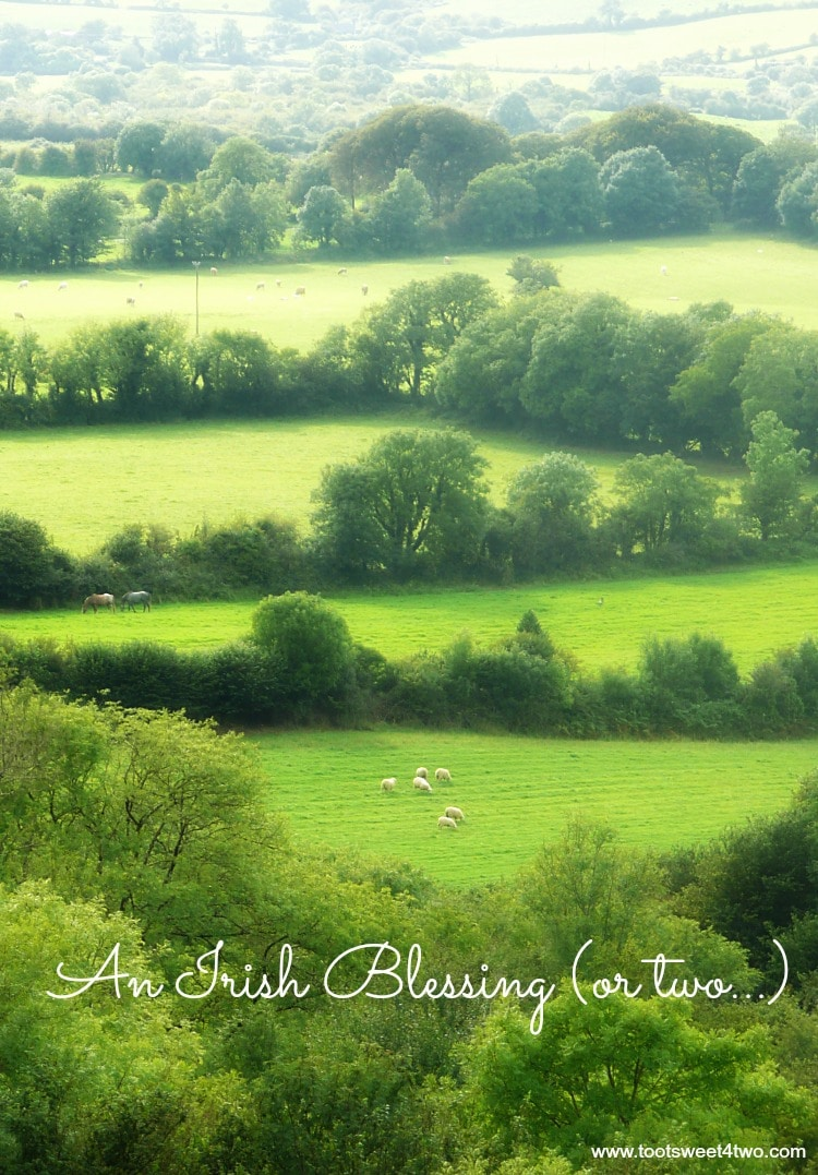 An Irish Blessing (or two) 750x1077