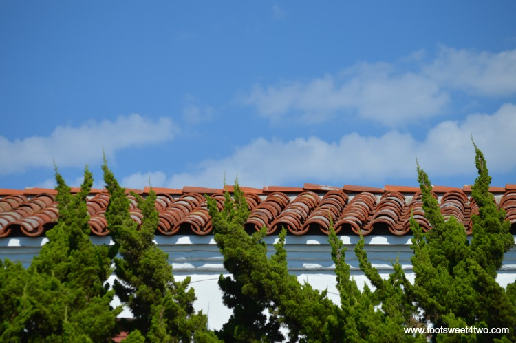 Cypress trees skimming the roofline at Old Mission San Luis Rey
