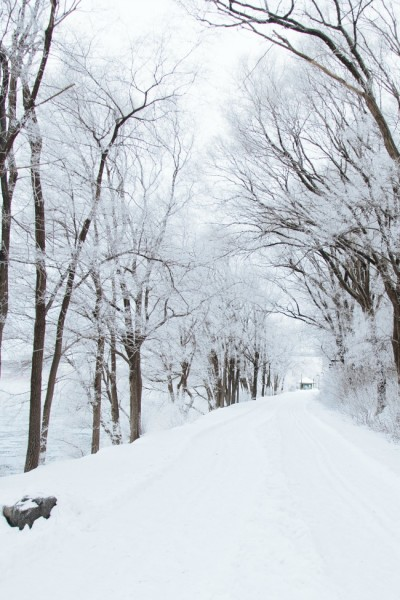How to Keep Your Family Safe During Extreme Winter Weather {Guest Post}