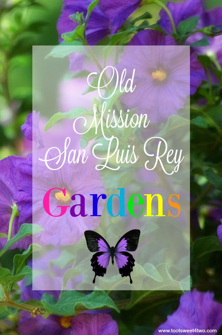 Old Mission San Luis Rey Gardens cover