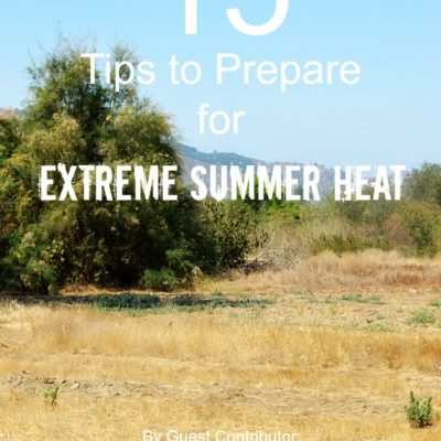 15 Tips to Prepare for Extreme Summer Heat {Guest Post}