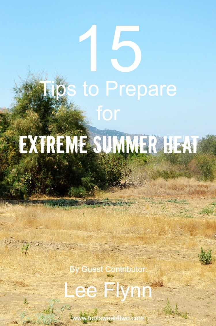Summer is here and the weather is heating up! Beat the heat with these 15 Tips to Prepare for Extreme Summer Heat. | www.tootsweet4two.com