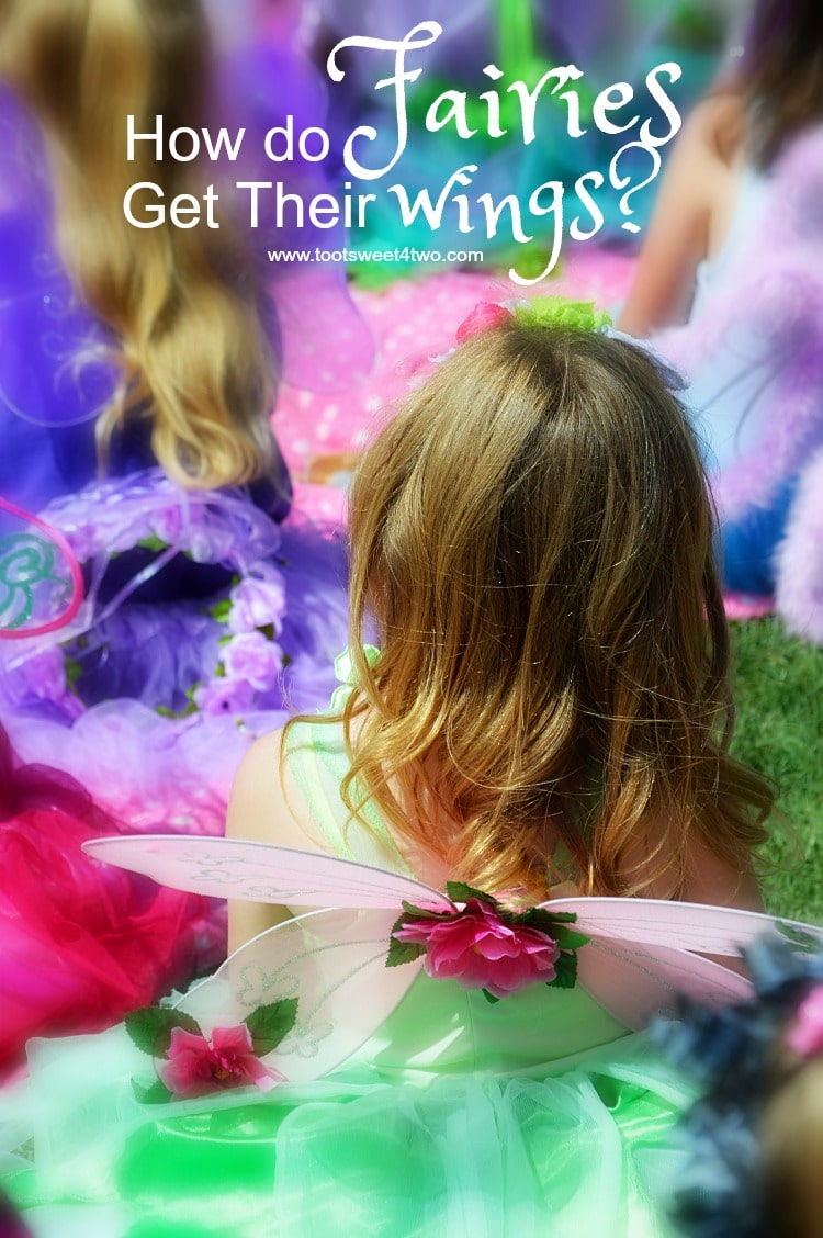 How Do Fairies Get Their Wings 750x1128