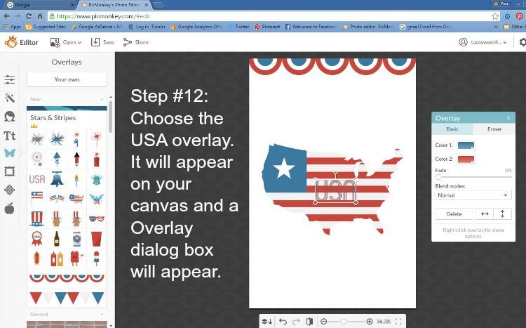 Step 12 - Choose the USA Overlay