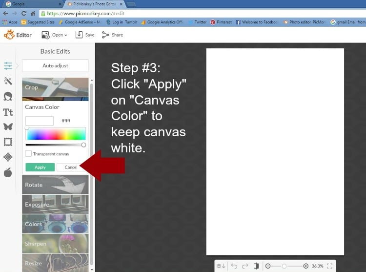 Step 3 - Click Apply on Canvas Color