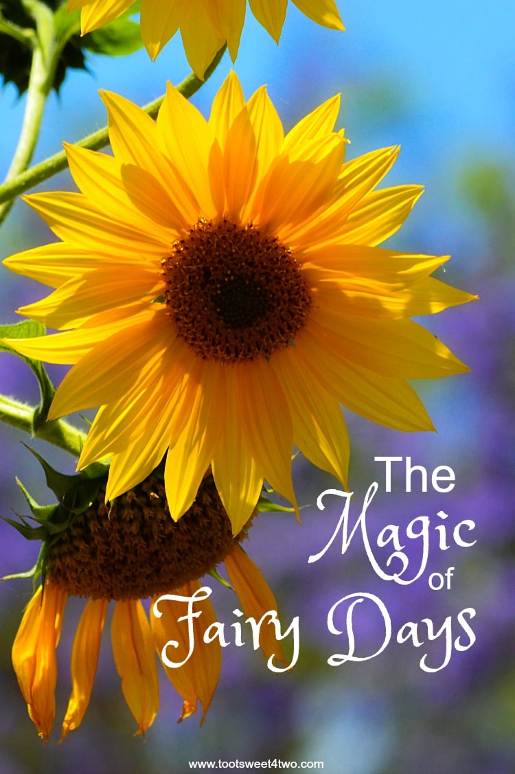 The Magic of Fairy Days 750x1127