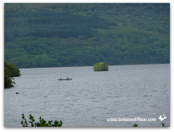 Mouse Island, Killarney National Park, Ireland