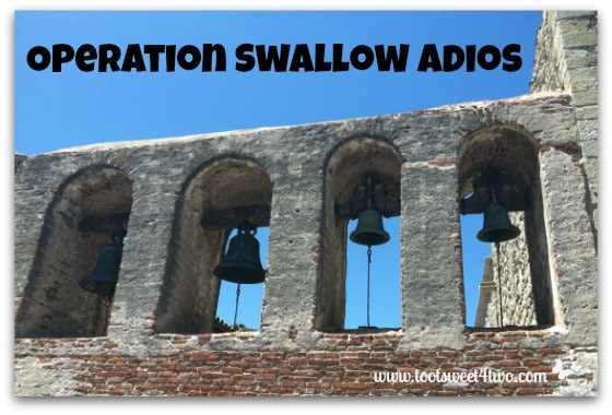 Operation Swallow Adios