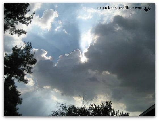 Arizona Cloud Puff - Look to the Sky