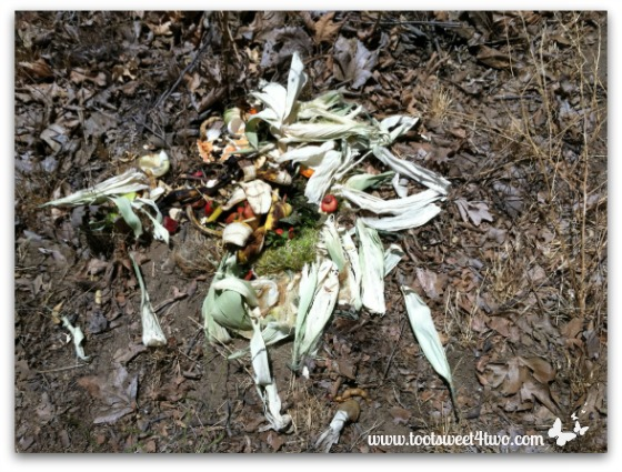 More kitchen scraps in the compost pile