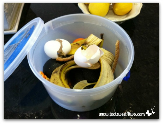 My ice cream bucket full of kitchen scraps for compost pile