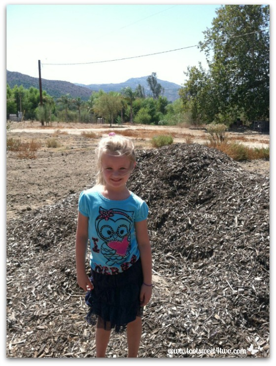 Princess P standing next to a pile of purchased mulch