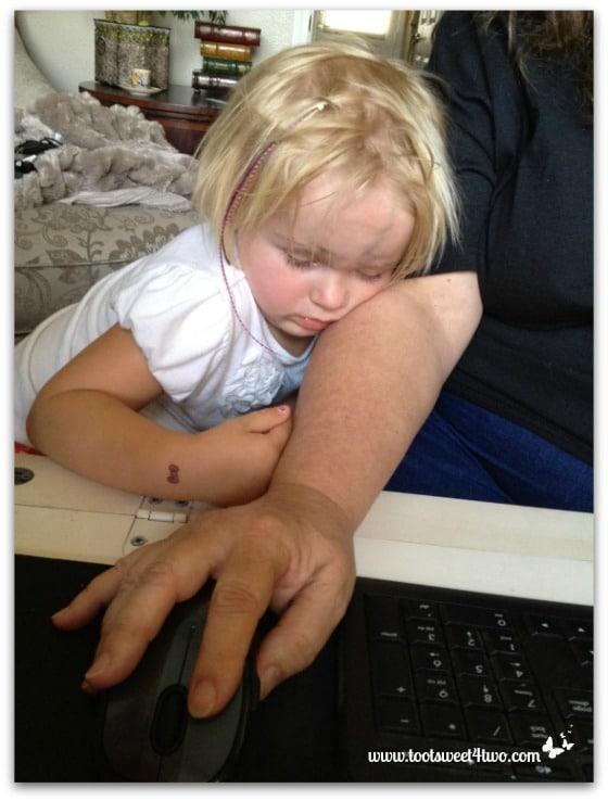 Princess Sweetie Pie asleep on my arm