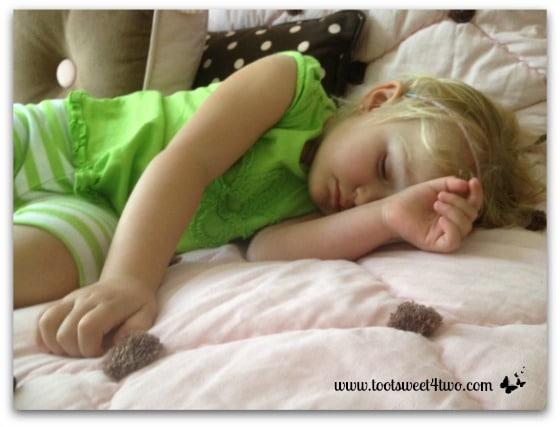 Princess Sweetie Pie asleep on pink bed