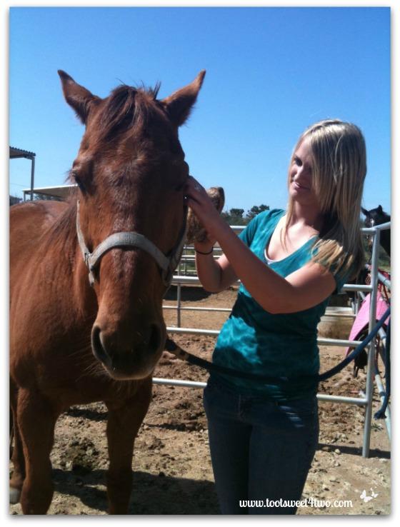 Samantha grooming Lisa's horse