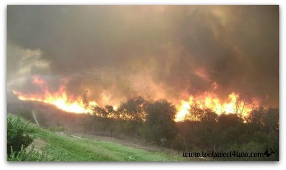Fire burning brush
