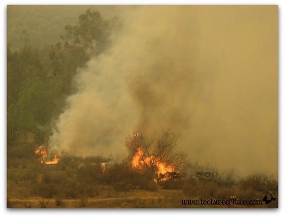 Smoke and burning brush