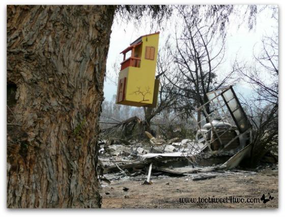 Wooden bird house that survived the firestorm